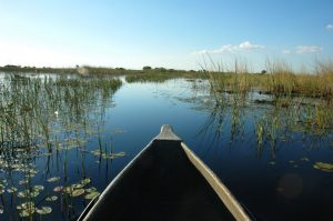 Okavango Wilderness Trail
