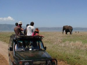 13 Day Kenya & Tanzania Adventure