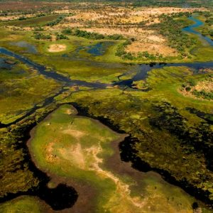 Delta Chobe and Kruger Tour