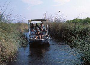 Botswana Mobile Camping Adventure