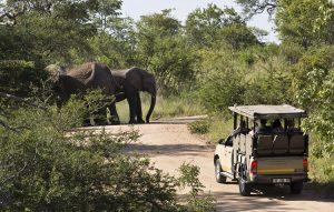 4 Day Kruger Camping Safari