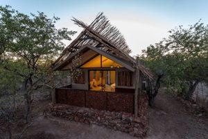 Dunes & Wildlife Accommodated Safari