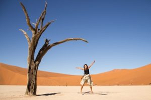 Taste of Namibia Accommodated Safari