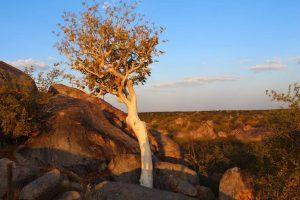 Namibia Explorer Camping Adventure