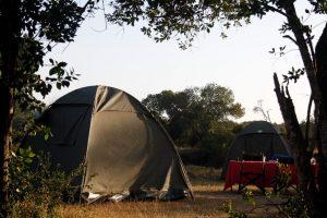 Kenya's Wild Side Camping
