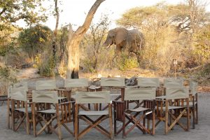 Great Trans Africa Lodge Safari