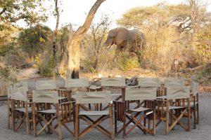 Great Trans Africa Lodge Safari