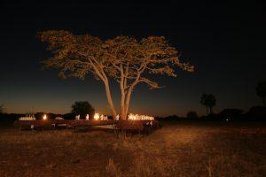 Kalahari Blooming Desert Experience