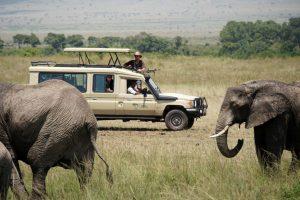 Kenya & Tanzania's Lodge Safari