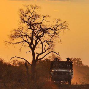 Best of Malawi & Zambia
